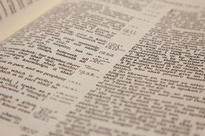 bible-text-11288023193bA2t